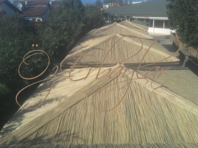 Kamış Çatı