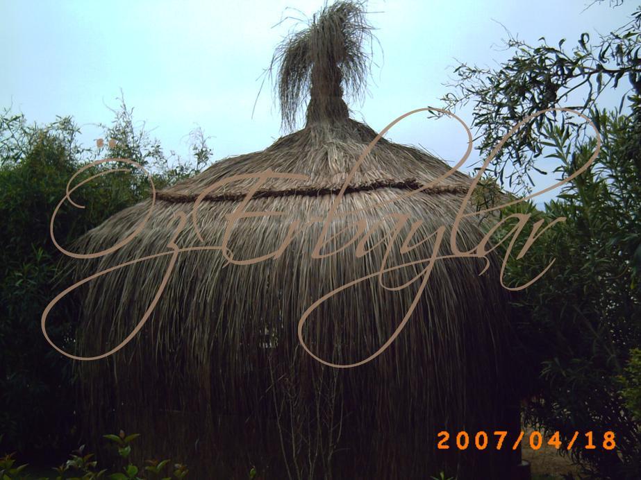 Bali Evi Fotoğrafları